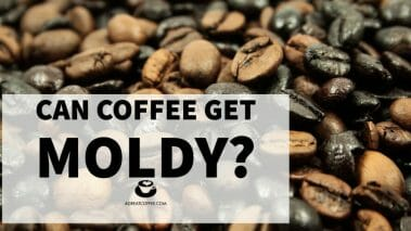 Can Coffee Get Moldy?